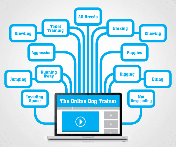 A graphic explaining the contents of the online dog trainer