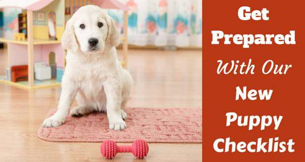 New puppy checklist written beside a golden retriever pup sitting behind a red bone chew toy