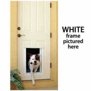 PlexiDor Large Electronic Dog Door isolated on white with a dog coming in to the house through it