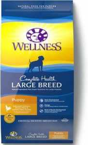 Wellness Large Breed Complete Health Puppy Deboned Chicken, Brown Rice & Salmon Recipe Dry Dog Food