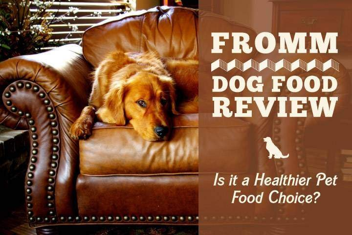 Fromm Dog Food Review Is It A Healthier Pet Food Choice