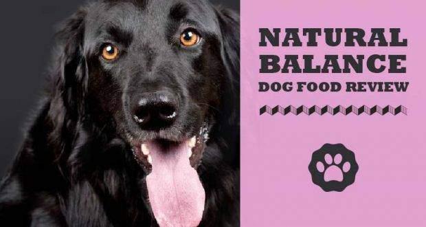 Natural Balance Dog Food Nutritional Info