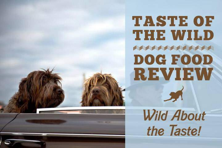 Taste Of The Wild Salmon Dog Food Recall