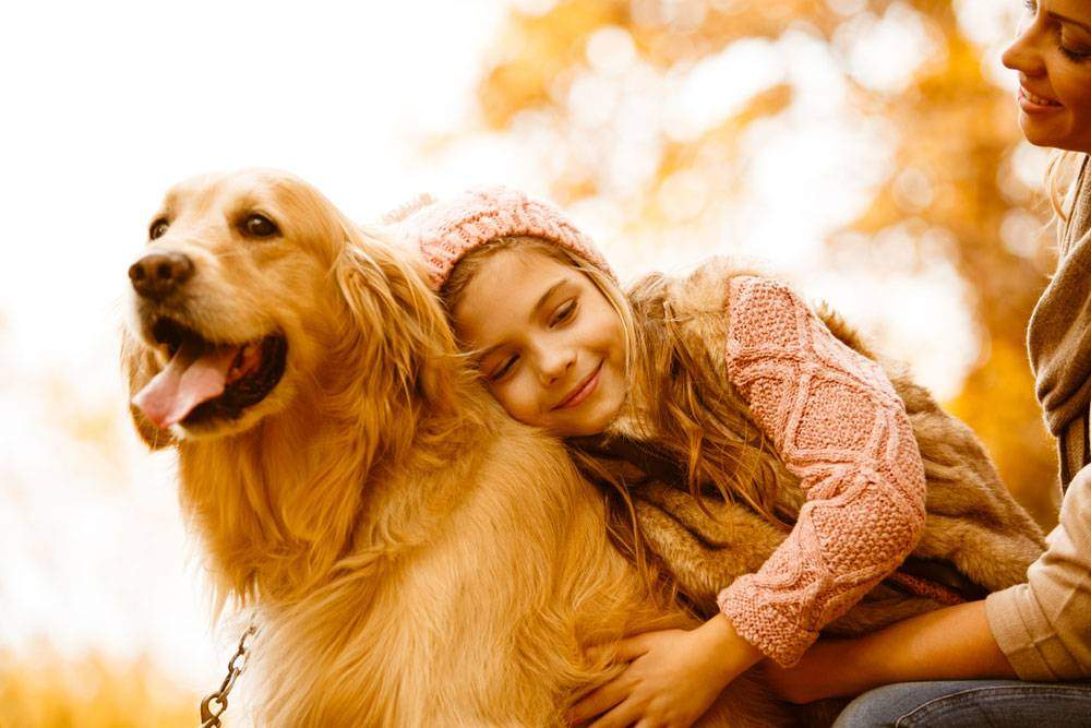 Girl hugging a Cream Golden Retriever