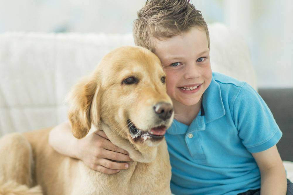 Boy hugging an English Cream Retriever