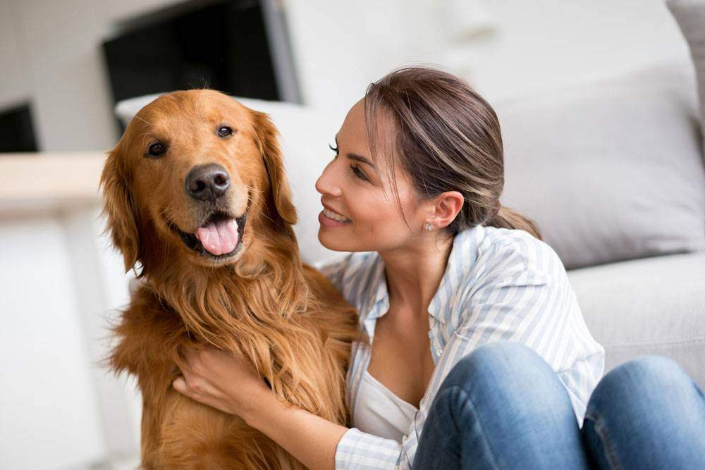 Woman hugging a Dark Golden Retriever