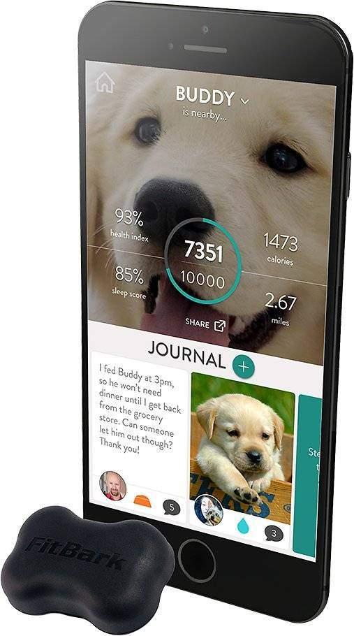 FitBark 2 Water Resistant Dog Activity & Sleep Monitor, Black