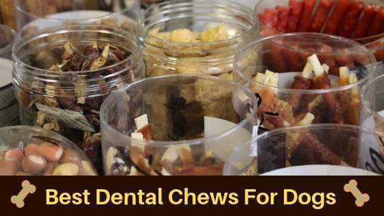 best dental chews for dogs