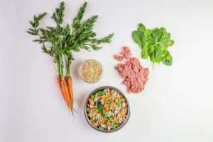 Tasty Turkey Fare Recipe - our best dog food for weight loss