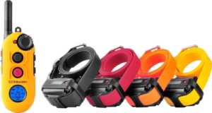E-Collar Technologies Easy Educator