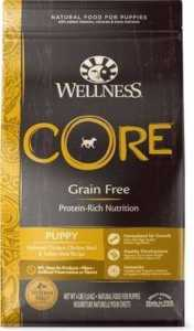 Wellness CORE Grain-Free Puppy Chicken & Turkey Recipe