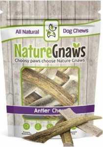 Nature Gnaws Deer Antlers