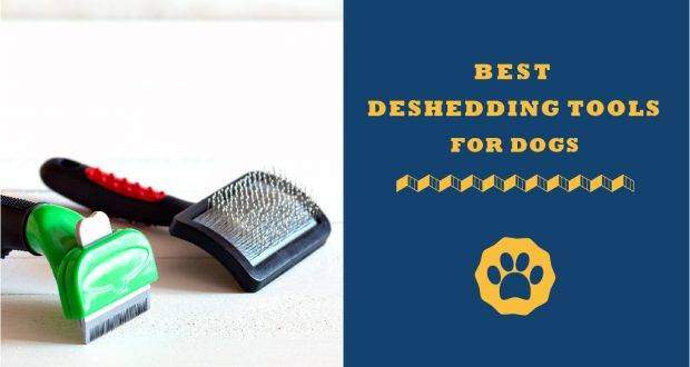 best deshedding tools for dogs