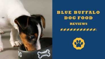 blue buffalo dog food reviews