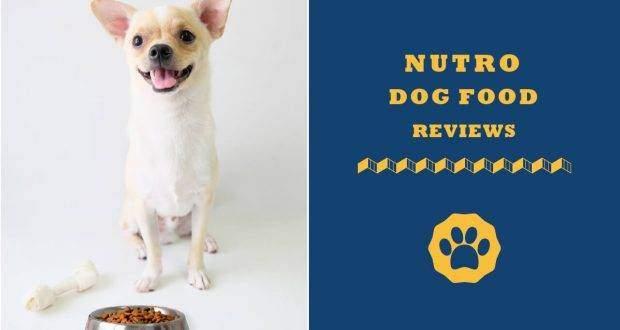 nutro dog food reviews