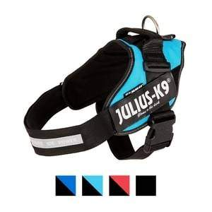 Julius-K9 Powerharness Dog Harness