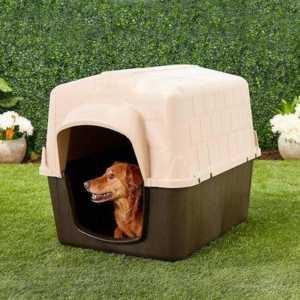 Aspen Pet Plastic Dog House