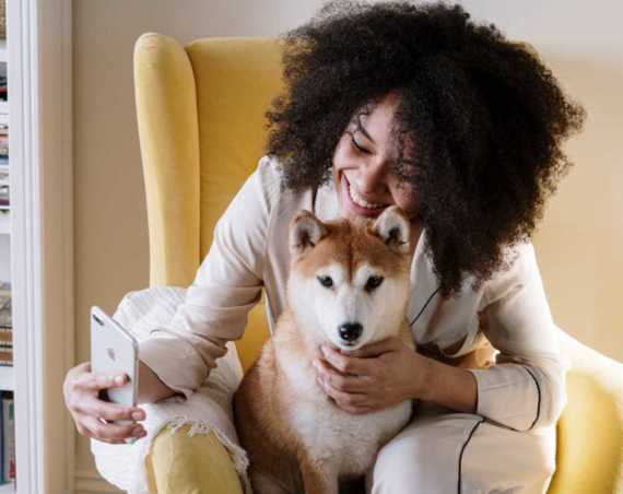 Best Toys for Anxious Dogs