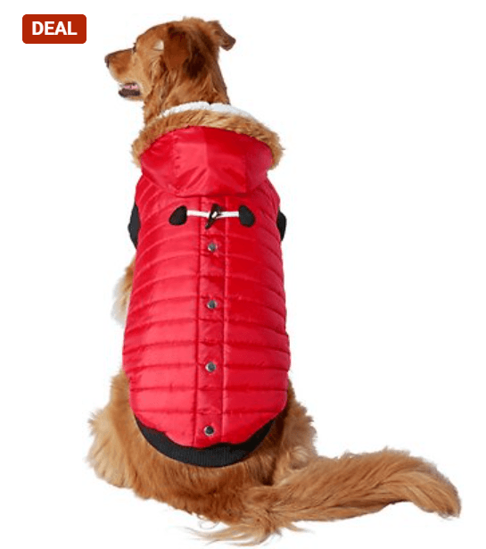 Frisco Insulated Dog & Cat Parka with Toggle Accent