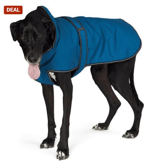 PetRageous Designs Juneau Insulated Dog Jacket