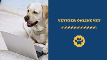 Vetster online vet