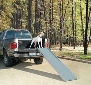 PetSafe Happy Ride Telescoping Dog Car Ramp