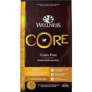 Wellness Core Grain-Free Puppy Food
